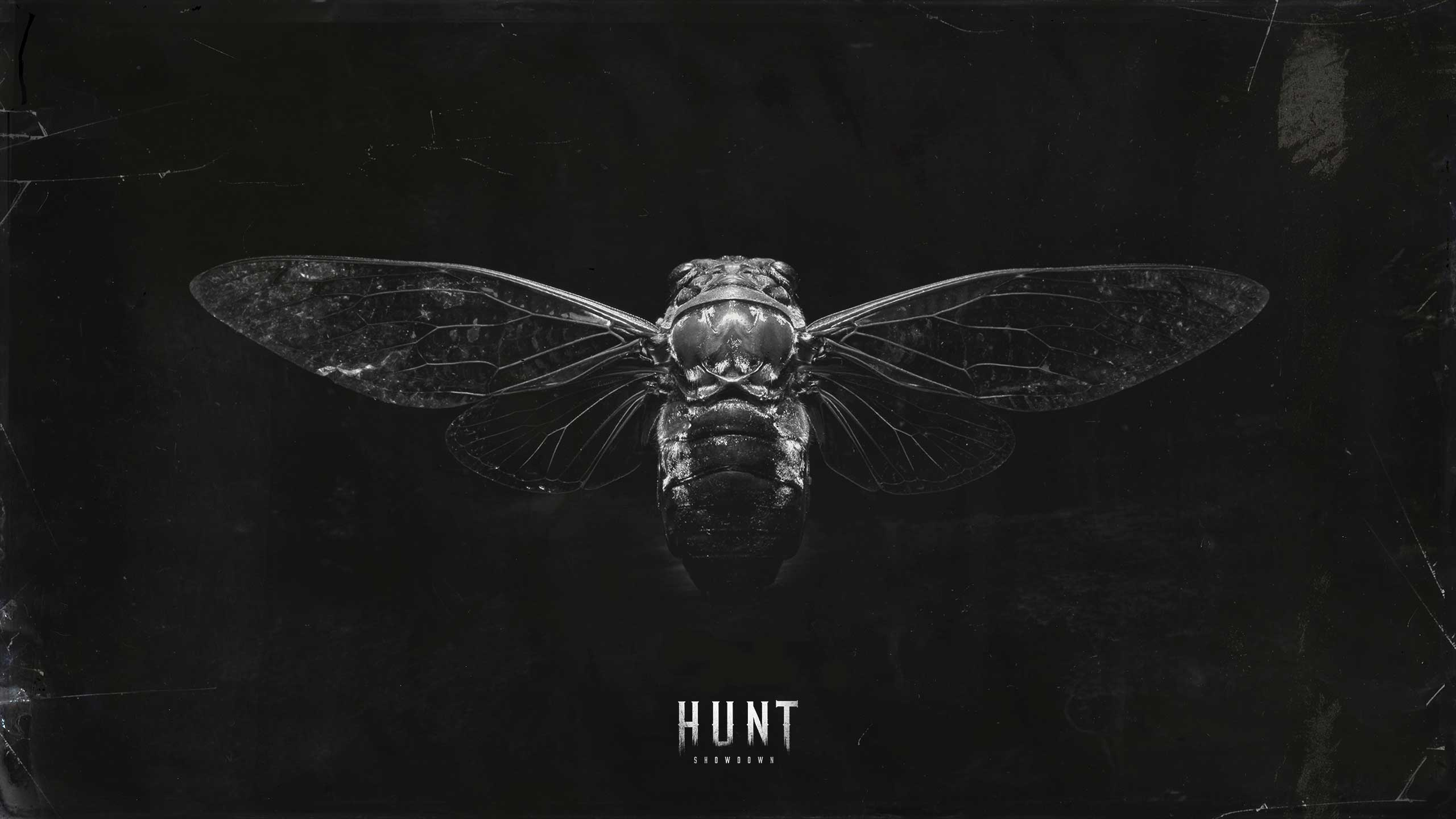 Hunt Showdown Media